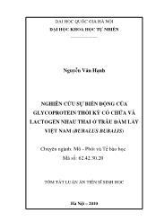 Tóm tắt Luận án Nghiên cứu sự biến động của Glycoprotein thời kỳ có chửa và Lactogen nhau thai ở trâu đầm lầy Việt Nam (Bubalus Bubalis)
